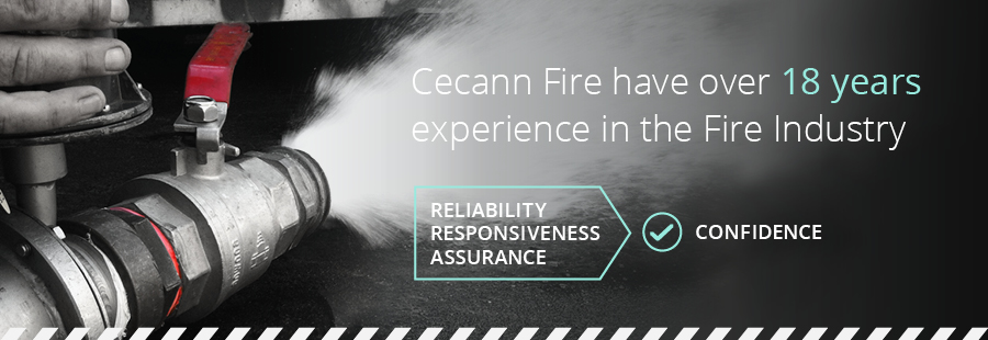 Cecann Fire - 18 Years