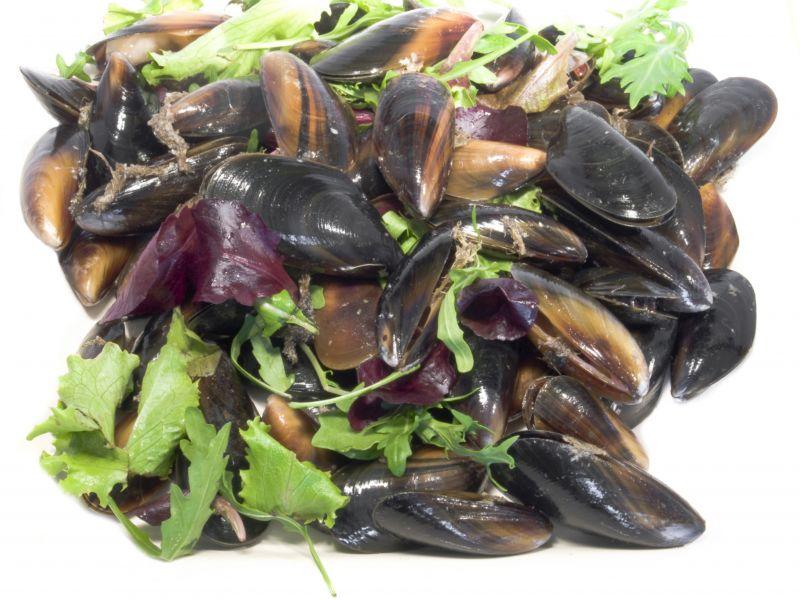Mussels Genoa